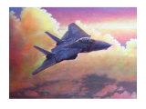 F-14A Tomcat Giclee Print by Douglas Castleman