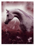 Silver Stallion Giclee Print by Dominique Cognee