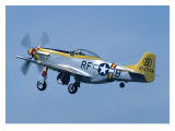 P-51 Mustang Giclee Print by Graham Collins