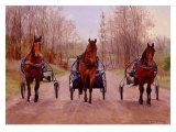 Winter Training Giclee Print by Joan Macintyre