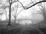 Gothic Bridge, Central Park, New York City Prints by Henri Silberman