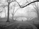 Henri Silberman - Gothic Bridge, Central Park, New York City - Reprodüksiyon