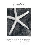 Erforschen Kunstdrucke von Deborah Van Swearingen