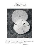 Träume Kunstdruck von Deborah Van Swearingen
