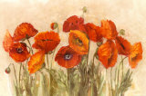 Vibrant Poppies Prints by Carol Rowan