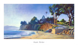 Stairs to the Beach Posters af Hank Pitcher