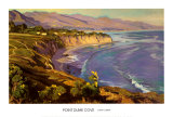 Point Dume Cove Poster by John Comer