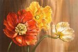 Poppies Poster by Selina Werbelow