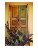 La Puerta Vieja Photographic Print by Larry L. Weingartner