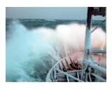 Headed north in the Bering Sea Photographic Print by Richard K Canty