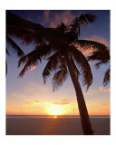 Cayman Island Sunset Photographic Print by George Oze