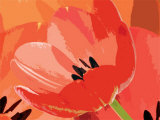Tulip I Poster by Jan Lens