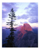 Half Dome from Glacier Point Photographic Print by Mike Norton