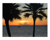 Sunset in Paradise Photographic Print by Chris M Burns