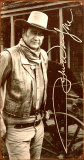 John Wayne Plakietka emaliowana