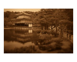 Golden Palace Photographic Print by Sean Popke