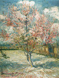 Bl&#252;hender Pfirsichbaum (Rosa) Kunstdruck von Vincent van Gogh