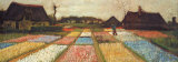 Flower Beds in Holland, c.1883 Posters by Vincent van Gogh