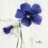 Pansies IV Prints by  Marthe