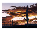 Sunset with Saguaro II Giclee Print by Patricia Ackor