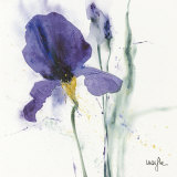 Iris I Art by  Marthe