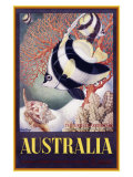 Australia Great Barrier Reef Giclee Print by  Mayo