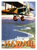 Hawaii, Sight Seeing by Air Giclee Print