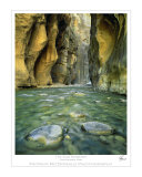 Zion Narrows Photographic Print by Patrick McDonald