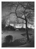 Winter at Night, New York, Central Park Wydruk giclee