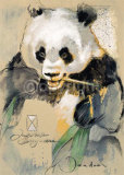 Wildlife Panda Posters by Joadoor
