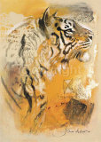 Wildlife Tiger Posters by Joadoor