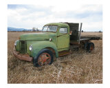 Old Green Truck - International Photographic Print by Jon Orsatti