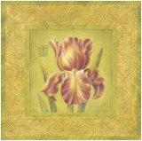 Golden Iris Poster by Lauren Hamilton