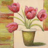 Potted Tulip Posters by Claire Lerner
