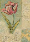 Tulip Chronicle Prints by Chad Barrett