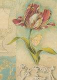 Tulip Narrative Print by Chad Barrett