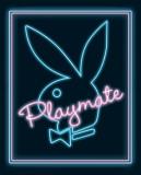 Playmate - Neon Print