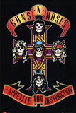 Guns N&#39; Roses Poster