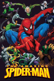The Amazing Spider-Man Print