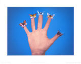 Some Butterflies, c.1975 Print by Jack Goldstein