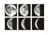 Moon Cycle, Japan Prints by Shigemi Numazawa