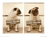 Pugsy Malone Art by Jim Dratfield