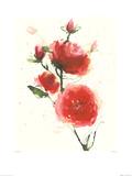 Wild Ruby Kunstdruck von Olivia Wade