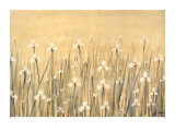 Field of White Prints by Simon Fairless
