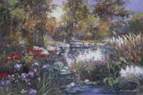 Koi Garden Prints by Joseph Kim