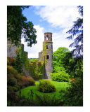 Blarney Castle Photographic Print by Vivian Allsopp