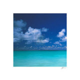 Tropical Waters III Print by Adam Brock