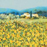 Lemon Grove, Tuscany Posters by Hazel Barker