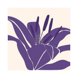 Lily Purple Posters by Emily Burrowes