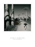 Allee des Baobabs II Plakater af Chris Simpson